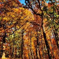 Photo taken at Greensfelder County Park by Fletch on 10/22/2012