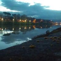 Foto scattata a Canottieri Comunali Firenze da Cristina S. il 3/6/2016