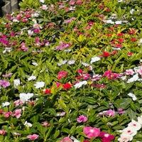 ... Photo Taken At Earl May Nursery U0026amp;amp; Garden Center  Omaha, NE ...