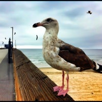 Photo taken at Newport Pier by Scott A. on 12/6/2012