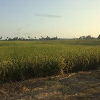 Photo taken at Parit 5 Barat by Shazuane S. on 7/4/2016
