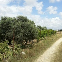 Photo taken at Ali Baba' nın Çiftliği by Kaan A. on 6/1/2014