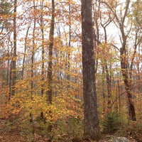 Photo taken at Stokes State Forest by Bridget F. on 10/27/2013