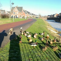 Photo taken at Bleiswijk by Edwin V. on 1/19/2017