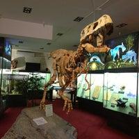 Снимок сделан в Вятский палеонтологический музей пользователем Radik M. 3/3/2013