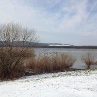 Photo taken at Kis-Balaton by Erzsébet T. on 2/11/2013
