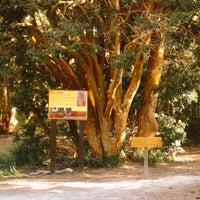Foto tirada no(a) Parque Nacional Los Arrayanes por Mariposa . em 12/19/2014