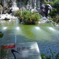 Photo taken at Kebun Binatang Ragunan by fauzan w. on 8/26/2013