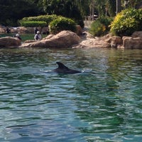 Photo taken at Discovery Cove by Bruna B. on 2/4/2013