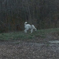 Photo taken at Warnimont Dog Park by Michelle S. on 11/2/2012