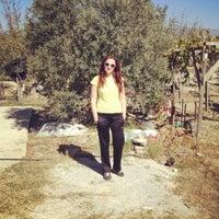 Photo taken at Ali Baba' nın Çiftliği by Htc on 10/15/2013