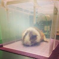 Photo taken at Premier Pet Hospital by Wibhas O. on 8/25/2014