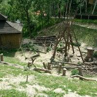 Photo taken at Ogród Zoologiczny by Tomasz J. on 5/18/2013