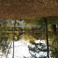 Photo taken at Entenpark by Hakan T. on 11/2/2012