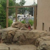 Photo taken at Great Plains Zoo by Hilary G. on 7/6/2013