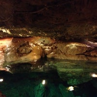 Das Foto wurde bei Cenote San Ignacio von Mariana L. am 11/5/2012 aufgenommen