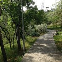 5/9/2013 tarihinde Csn İ.ziyaretçi tarafından Botanik Parkı'de çekilen fotoğraf