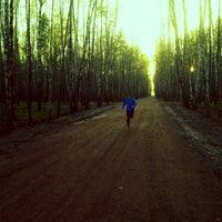 Das Foto wurde bei Мещерский парк von Alex F. am 5/5/2013 aufgenommen