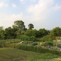 Photo taken at 柳本大塚古墳 by K.Watch on 5/31/2014