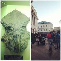 Снимок сделан в Вятский палеонтологический музей пользователем ReKa R. 5/18/2013