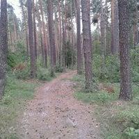 Photo taken at Тропинка Заречаны-Гуйва by Aleksandr T. on 7/3/2013