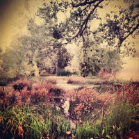 Photo taken at Woodward Park by Joie T. on 9/21/2013