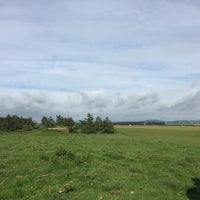 Photo taken at Curragh Plains by Dominique V. on 9/15/2016