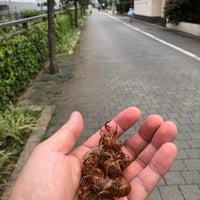 Photo taken at 世田谷区立 中町小学校 by Ryan T. on 7/26/2018