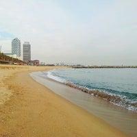 Photo taken at Barceloneta Beach by Сергей Л. on 11/22/2012