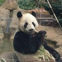 Photo taken at Ueno Zoo by Machiko on 1/23/2013