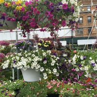 Photo taken at Kings County Nurseries by Priscilla a. on 5/2/2016