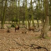 Снимок сделан в Wollaton Hall & Deer Park пользователем Daryn S. 3/3/2013
