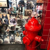 Photo taken at Downtown Dogs by Alexander K. on 10/20/2017