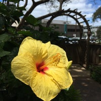 Photo taken at Hawaiian Humane Society by §uz E. on 4/7/2017