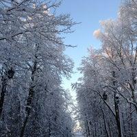 Снимок сделан в Александровский сад пользователем Konstantin P. 1/11/2013