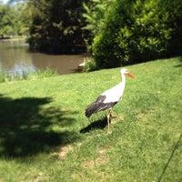 Photo taken at Parc de l'Orangerie by Irina S. on 5/20/2014