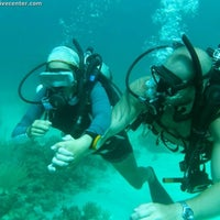 Photo taken at Utila Dive Center by Sandra A. on 7/27/2013