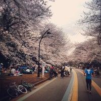 Das Foto wurde bei Komazawa Olympic Park von S_W_D am 3/20/2013 aufgenommen