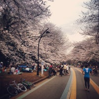Photo taken at Komazawa Olympic Park by S_W_D on 3/20/2013