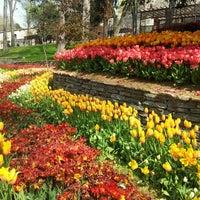 4/22/2013 tarihinde Selin T.ziyaretçi tarafından Gülhane Parkı'de çekilen fotoğraf