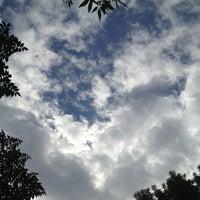 Photo taken at 東高津公園 by kaname k. on 11/5/2012