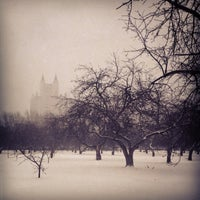 Снимок сделан в Яблоневый сад пользователем Maffin* 12/27/2012