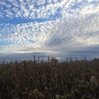 Photo taken at Salisbury Farm Corn Maze by Cherry Qianyun L. on 10/31/2015