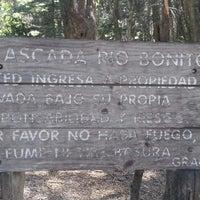 1/18/2014にAndrés P.がCascada Río Bonitoで撮った写真