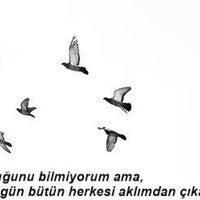 Photo taken at keyf-i muhabbet by Mehmet on 7/1/2014