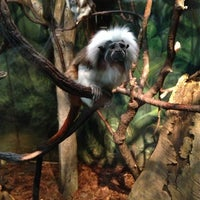 Photo taken at Central Park Zoo by Настюшка on 12/20/2012