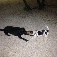 Photo taken at Πάρκο για σκυλιά by Ρίνα ♈ ΧΧΧ on 1/31/2014