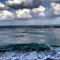 Foto tirada no(a) Spanish River Beach por Alex M. em 3/24/2013