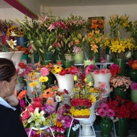รูปภาพถ่ายที่ Florería Flores de Oaxaca โดย Carlitos V. เมื่อ 12/14/2012
