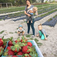 Photo taken at Pappy's Strawberry Patch by Jayson W. on 2/4/2017